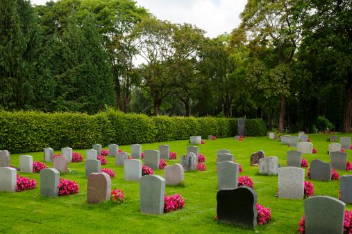 Gravplats med gravstenar